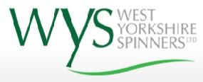 wys logo2